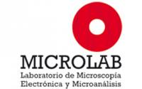Laboratory of Electron Microscopy and Microanalysis (MicroLab)